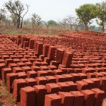 Sun-dried mud bricks